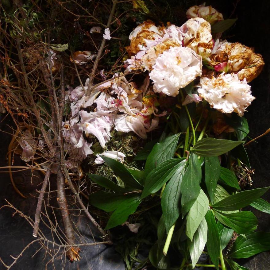 Harlan_David_03_ Flowers 2012 [095a]c